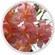 Round Beach Towel featuring the photograph Oleander Dr. Ragioneri 4 by Wilhelm Hufnagl