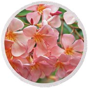Round Beach Towel featuring the photograph Oleander Dr. Ragioneri 5 by Wilhelm Hufnagl