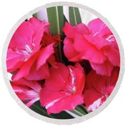 Round Beach Towel featuring the photograph Oleander Geant Des Batailles 1 by Wilhelm Hufnagl