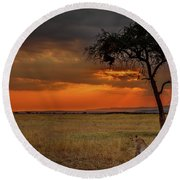 On A  Serengeti Evening  Round Beach Towel