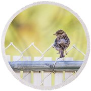 On The Fence Round Beach Towel