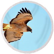 Round Beach Towel featuring the photograph On The Hunt by AJ Schibig