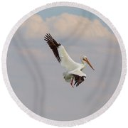 Round Beach Towel featuring the photograph On The Hunt by James BO Insogna