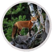 On The Lookout Round Beach Towel by Gary Hall