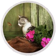One Cute Kitten Waiting At The Door Round Beach Towel