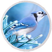 One Frosty Morning Round Beach Towel
