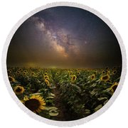 Round Beach Towel featuring the photograph One In A Million  by Aaron J Groen