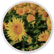 Round Beach Towel featuring the photograph One In A Million Sunflowers by Chris Berry