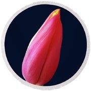 One Red Tulip Round Beach Towel