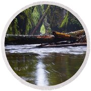 Round Beach Towel featuring the photograph Oneonta Pano by Jonathan Davison