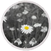 Round Beach Towel featuring the photograph Oopsy Daisy by Benanne Stiens