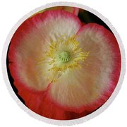 Open Poppy Round Beach Towel
