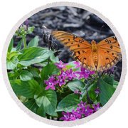 Open Wings Of The Gulf Fritillary Butterfly Round Beach Towel