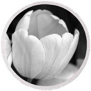 Opening Tulip Flower Black And White Round Beach Towel