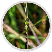 Round Beach Towel featuring the photograph Openminded Green Dragonfly Art by Reid Callaway