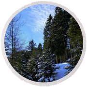 Round Beach Towel featuring the photograph Optimistic  by Elfriede Fulda