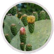 Opuntia Cactus Round Beach Towel