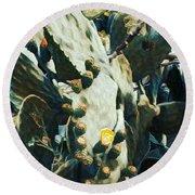 Opuntia Ficus Round Beach Towel