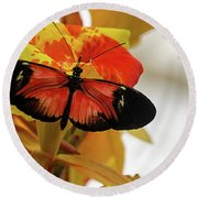 Orange And Black Butterfly Round Beach Towel