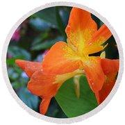 Orange And Yellow Canna Lily 2  Round Beach Towel