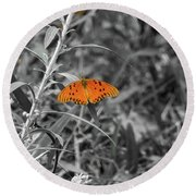 Orange Butterfly In Black And White Background Round Beach Towel