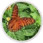 Orange Butterfly   Round Beach Towel