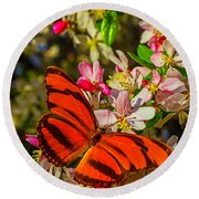 Orange Butterfly On Flowering Tree Round Beach Towel