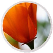 Orange California Poppy . 7d14789 Round Beach Towel