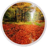 Round Beach Towel featuring the photograph Orange Carpet by Dmytro Korol