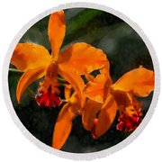 Orange Cattleya Orchid Round Beach Towel