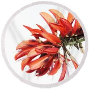 Orange Clover I Round Beach Towel