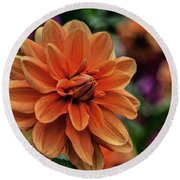 Orange Dahlias Round Beach Towel by Shirley Mangini
