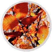 Round Beach Towel featuring the photograph Orange Fall Leaves by Meta Gatschenberger