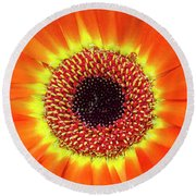 Orange Flower Macro Round Beach Towel