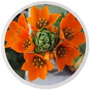 Round Beach Towel featuring the photograph Orange Flower Zoom by Jasna Gopic