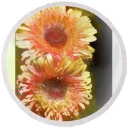 Orange Gebera Daisies Round Beach Towel