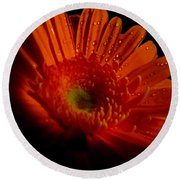 Orange Gerbera Round Beach Towel