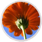 Orange Gerbera Flower Round Beach Towel