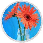 Orange Gerberas In A Vase - Aqua Background Round Beach Towel