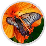 Orange Hibiscus Butterfly Round Beach Towel by ABeautifulSky Photography
