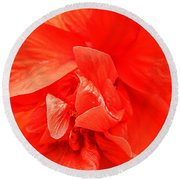Round Beach Towel featuring the photograph Orange Hibiscus by Cathy Donohoue
