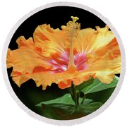 Orange Hibiscus - Flower Round Beach Towel