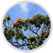 Orange Lehua On A Ranch In Volcano, Hawaii  Round Beach Towel