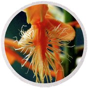 Fringed Orange Orchid Round Beach Towel