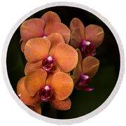 Orange Orchids Round Beach Towel