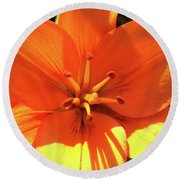 Orange Pop Round Beach Towel