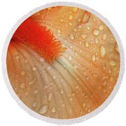 Orange Sherbet Round Beach Towel