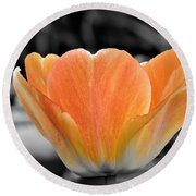 Orange Tea Cup Tulip Round Beach Towel