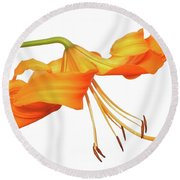 Orange Tiger Lily Round Beach Towel