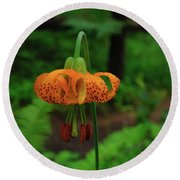 Round Beach Towel featuring the photograph Orange Tiger Lily by Tikvah's Hope